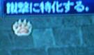 にくきゅう(*´Д`*)