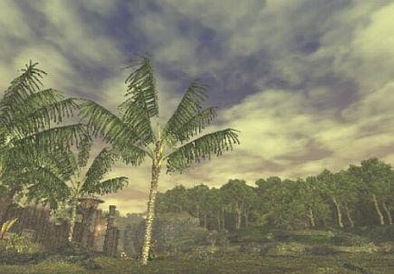 ユタンガOP前の空